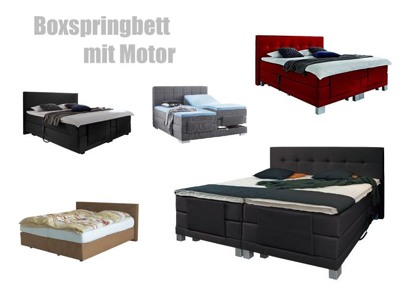 boxspringbett mit motor und bettkasten boxspringbett mit motor filou von oschmann in grau m bel. Black Bedroom Furniture Sets. Home Design Ideas
